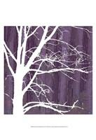 "Small Aurora Silhouette IV (P) by Alicia Ludwig - 13"" x 19"""