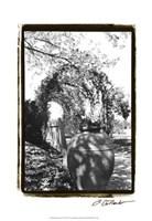 "Garden Grace IV by Laura Denardo - 13"" x 19"", FulcrumGallery.com brand"
