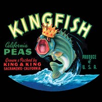 Kingfish by Vision Studio - various sizes
