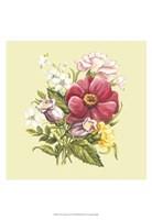 "Summer Bouquet II by Megan Meagher - 13"" x 19"""