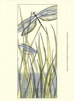 Small Gossamer Dragonflies I (P) Fine Art Print