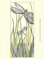 Small Gossamer Dragonflies II (P) Fine Art Print