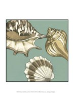 "Small Shell Trio on Blue III (P) by Megan Meagher - 10"" x 13"""
