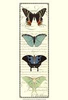 Small Butterfly Prose Panel II Fine Art Print