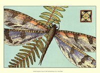"Dragonfly on Aqua I by Vision Studio - 13"" x 10"""