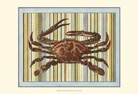 "Seashore Crab by Vision Studio - 19"" x 13"""