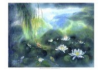"19"" x 13"" Water Lily Pictures"
