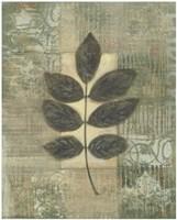 """Leaf Textures II by Norman Wyatt Jr. - 16"""" x 20"""""""