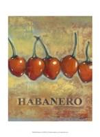 "Habanero by Norman Wyatt Jr. - 10"" x 13"""