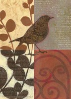 Damask Sparrow Fine Art Print