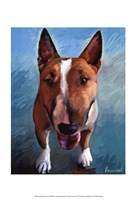 "Spike Bull Terrier by Robert McClintock - 13"" x 19"""