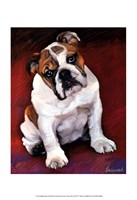 "Bulldog Baby by Robert McClintock - 13"" x 19"""