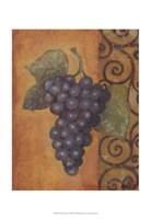 "Scrolled Grapes II by Norman Wyatt Jr. - 13"" x 19"""