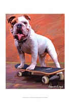 Bull Dog Nose Grind Fine Art Print