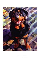 "Handsome Rottie by Robert McClintock - 13"" x 19"", FulcrumGallery.com brand"