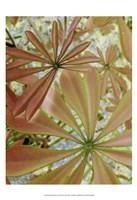 Woodland Plants in Red III Fine Art Print