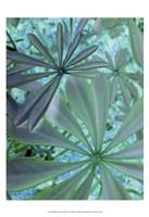 Woodland Plants in Blue III Fine Art Print