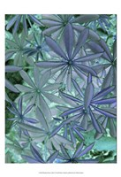 Woodland Plants in Blue IV Fine Art Print