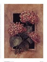 Framed Hydrangea Fine Art Print