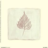 Leaf Impression lll Fine Art Print