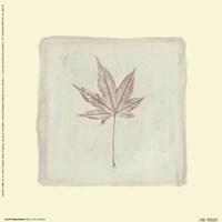 Leaf Impression ll Fine Art Print