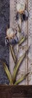 Magasin Floral Fine Art Print