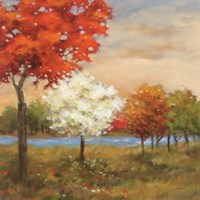 Four Seasons by Adam Rogers - various sizes