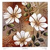 "Sienna White I by Michael Brey - 19"" x 20"""