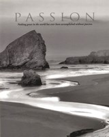Passion Fine Art Print