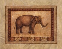 Asian Elephant Framed Print