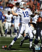 Peyton Manning 2010 throwing the ball Fine Art Print