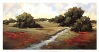 Kissimmee Grasslands Fine Art Print