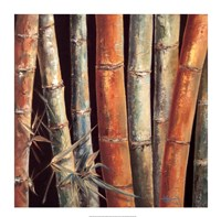 "Caribbean Bamboo I by Tita Quintero - 31"" x 31"""