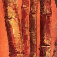 """Bamboo Columbia III by Tita Quintero - 12"""" x 12"""""""