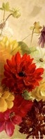 """Blooming Panel I by Lanie Loreth - 6"""" x 18"""""""