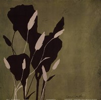 Fleur'ting Silhouettes Framed Print
