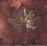 """Maple I by Patricia Pinto - 6"""" x 6"""", FulcrumGallery.com brand"""