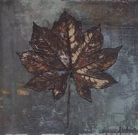 Maple IV Fine Art Print