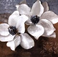 "White Magnolia II by Lanie Loreth - 24"" x 24"""