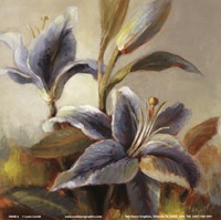 """Lilies After the Rain by Lanie Loreth - 6"""" x 6"""""""