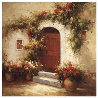 Rustic Doorway IV Framed Print