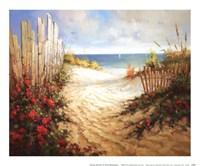 Seaside Pathway Framed Print