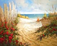 Seaside Pathway Fine Art Print