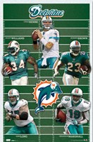Dolphins - Team 2010 Wall Poster