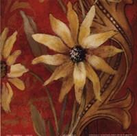"Honeyed Square II by Lanie Loreth - 12"" x 12"""