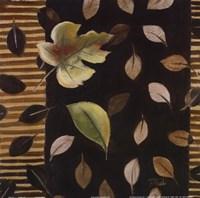 "Hojitas II by Patricia Pinto - 12"" x 12"""