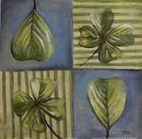 """Natura I by Patricia Pinto - 12"""" x 12"""""""