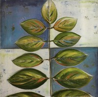 """The Green Compliment I by Patricia Pinto - 12"""" x 12"""""""