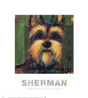 "Sherman by Karen Dupre - 18"" x 20"""