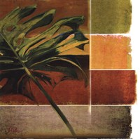 "Morning Light I by Patricia Pinto - 12"" x 12"", FulcrumGallery.com brand"